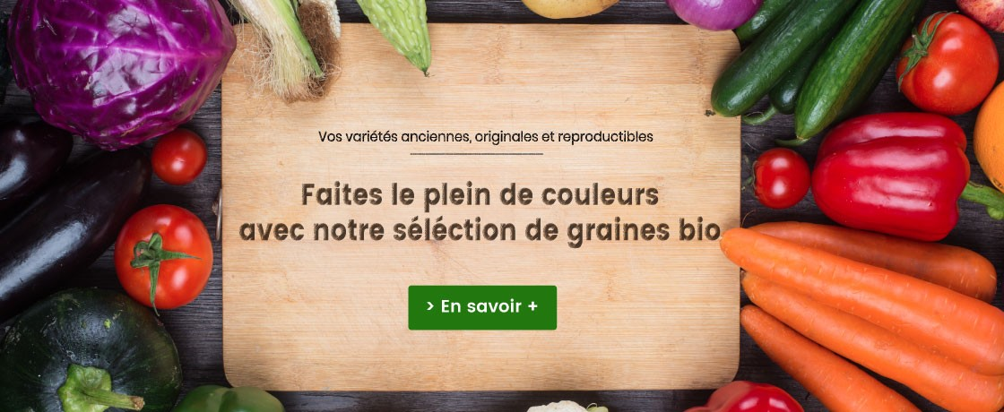 Selection de graines bio biotanic seeds